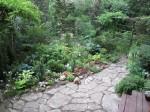 david thomas back garden