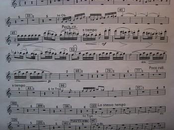 Bartok Concerto for Orchestra Movt. 2